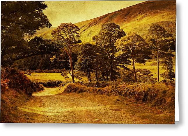 Celtic Spirit. Wicklow  Mountains. Ireland Greeting Card by Jenny Rainbow