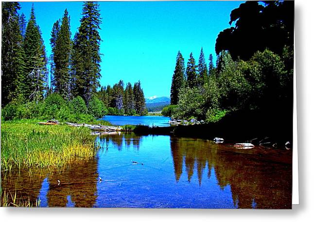Central Oregon Tranquility  Greeting Card by Nick Kloepping
