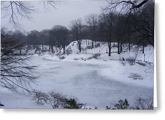 Central Park In The Snow Greeting Card by Clare Staplehurst