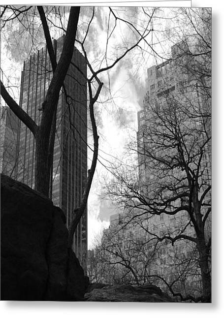 Central Park One Greeting Card