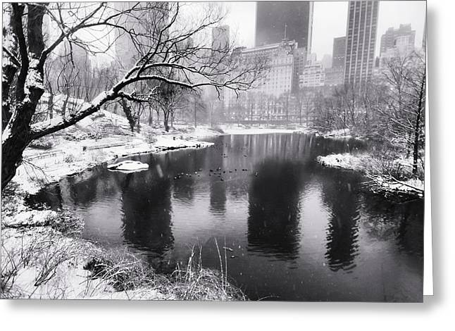 Central Park Snow Greeting Card by Vicki Jauron