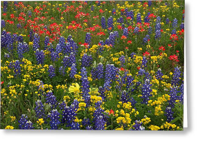 Central Texas Mix Greeting Card