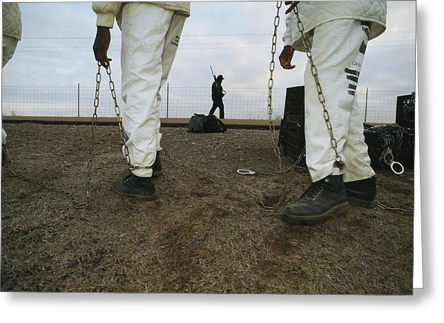 Chain Gang Prisoners Being Watched Greeting Card by Bill Curtsinger