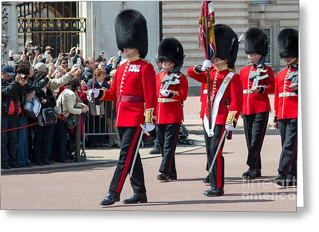 Changing Of The Guard At Buckingham Palace Greeting Card by Andrew  Michael