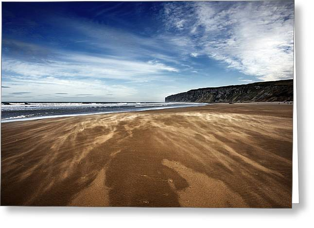 Chasing Sand Greeting Card by Svetlana Sewell