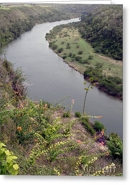 Chavon River View Greeting Card by Chris Hill