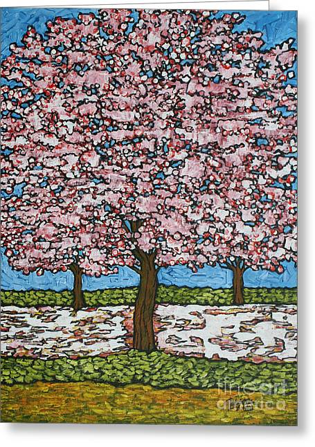 Cherry Blossom Trio Greeting Card by Tracy Levesque