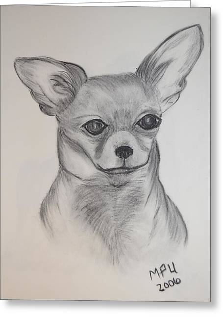 Greeting Card featuring the drawing Chi Chi by Maria Urso
