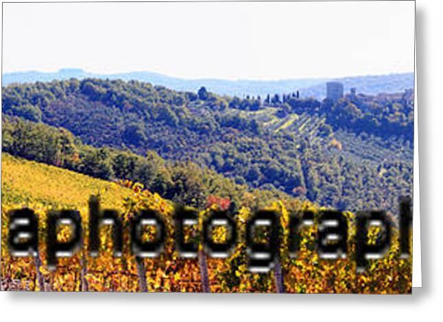 Chianit Greeting Card by Rosanne Nitti