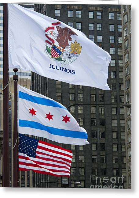 Chicago Flags Greeting Card by Ann Horn