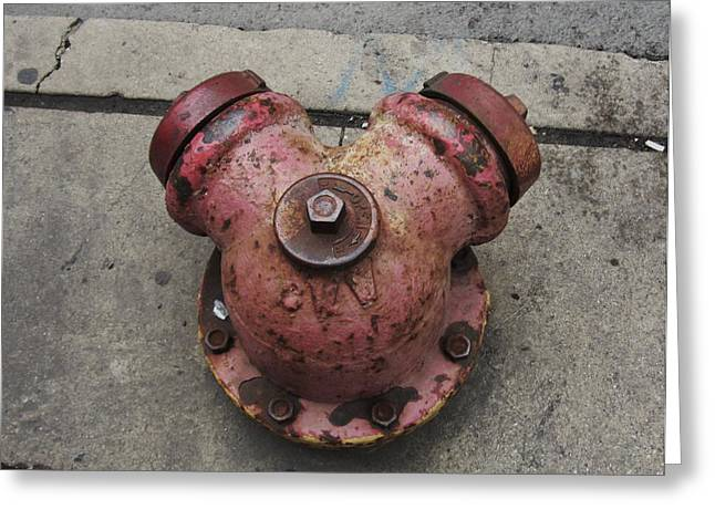 Chicago Hydrant Greeting Card by Todd Sherlock