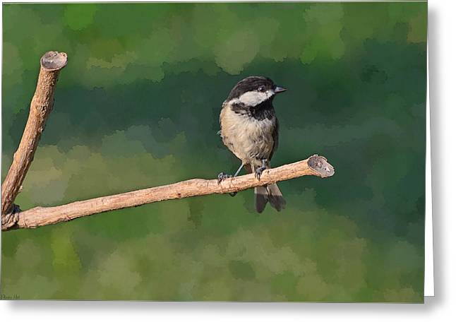 Chickadee On A Stick Greeting Card by Debbie Portwood