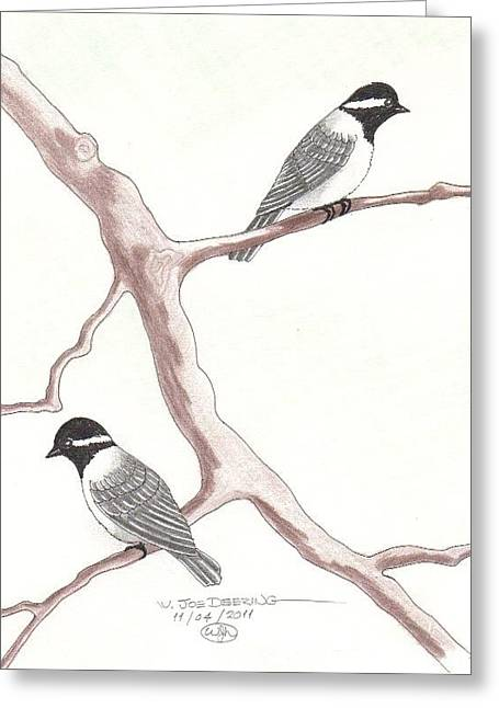 Chickadees Greeting Card by William Deering