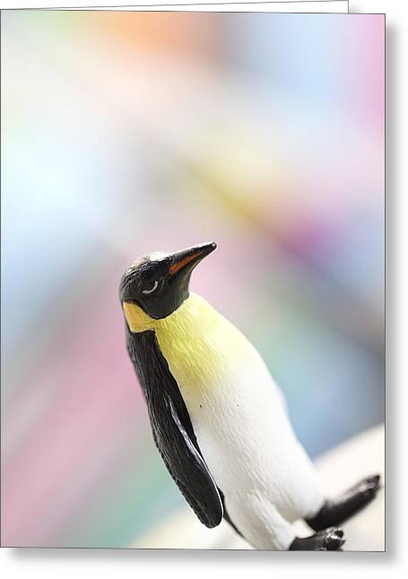 Chief Penguin Greeting Card by Greg Kopriva