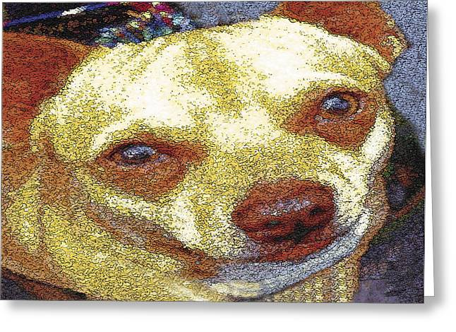 Chihuahua Greeting Card by Alice Ramirez