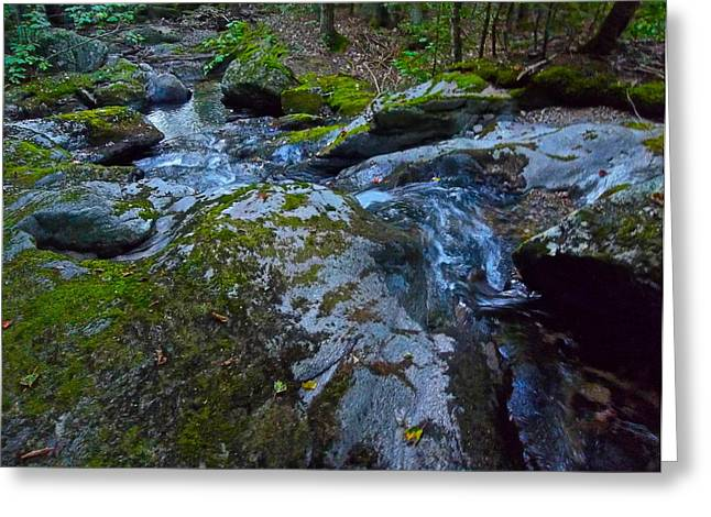 Childs Brook Summer 18 Greeting Card by George Ramos