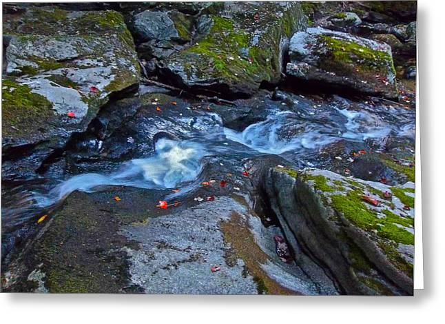 Childs Brook Summer 24 Greeting Card by George Ramos