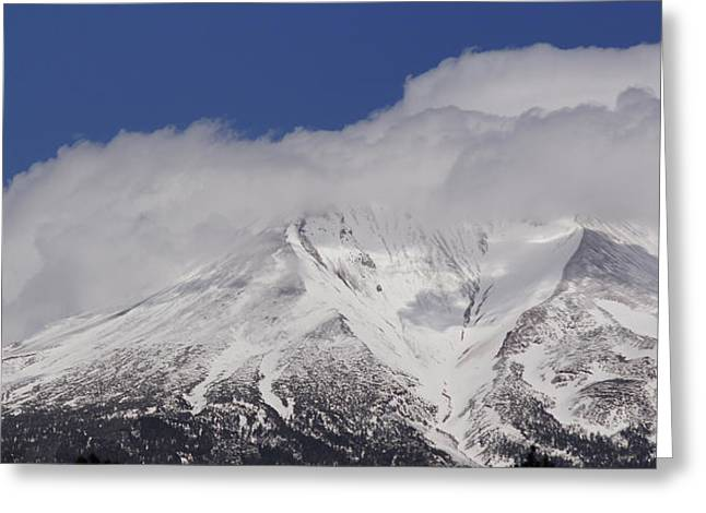 Chill Winds Across Shasta's Peak Greeting Card by Mick Anderson