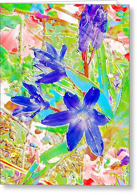 Chionodoxa Greeting Card