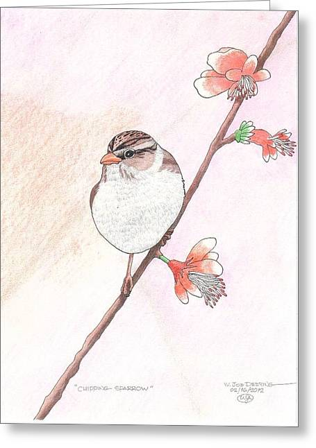 Chipping Sparrow Greeting Card by William Deering