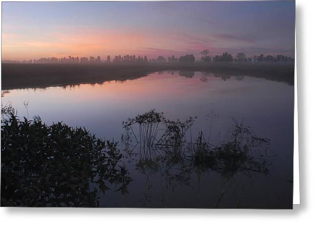 Chiquitania Laguna In The The Evening. Republic Of Bolivia. Greeting Card by Eric Bauer