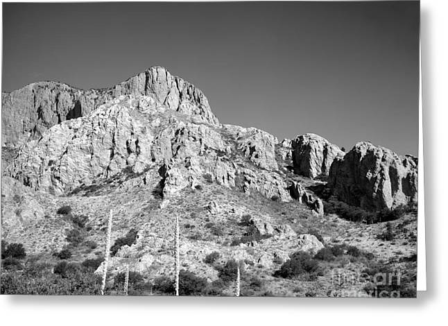 Chisos Mountain Detail Greeting Card
