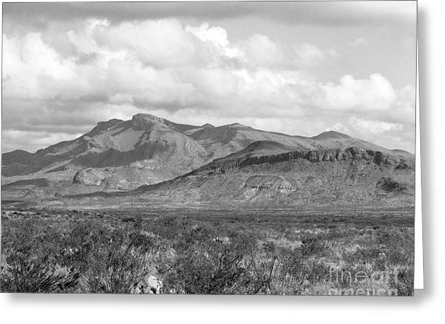 Chisos Mountain View Greeting Card