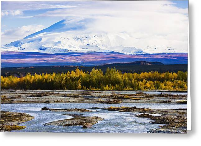 Chistochina River And Mount Sanford Greeting Card by Yves Marcoux