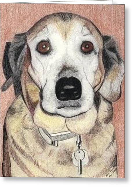 Greeting Card featuring the drawing Chloe by Ana Tirolese