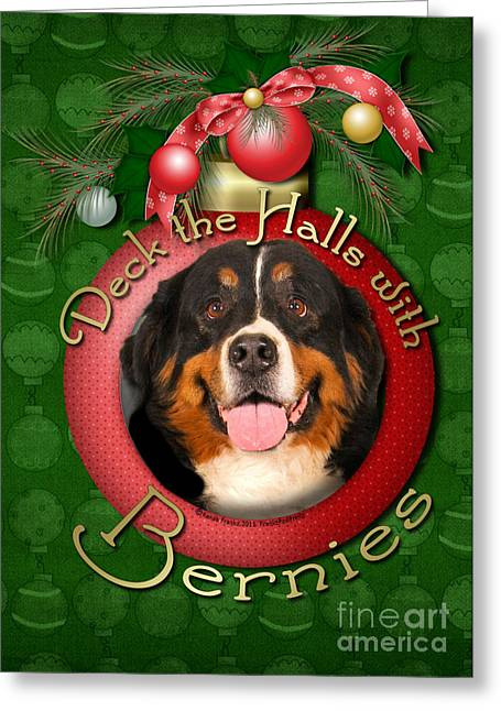 Christmas - Deck The Halls With Bernies Greeting Card by Renae Laughner