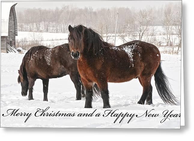 Christmas 8 Greeting Card