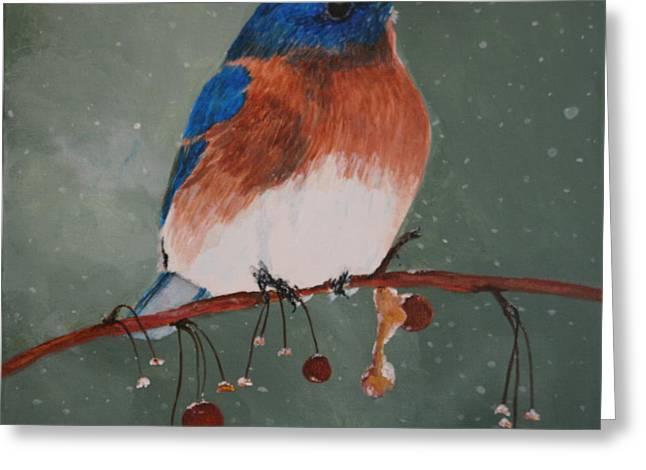 Christmas Bluebird Greeting Card by Betty-Anne McDonald