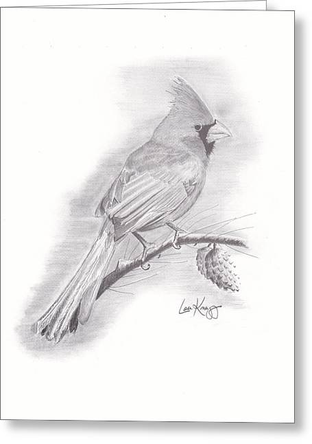 Christmas Cardinal Drawing by Lou Knapp