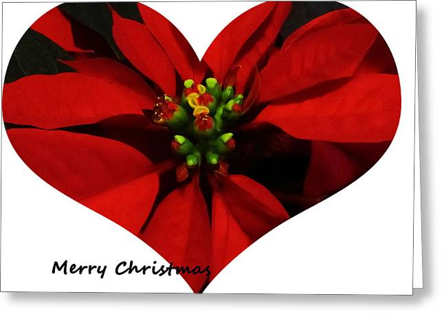 Christmas Greetings Greeting Card by Vijay Sharon Govender