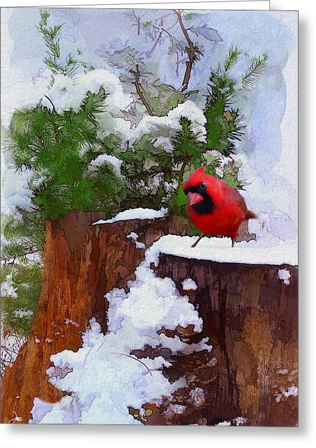 Christmas Guest Greeting Card by Ron Jones