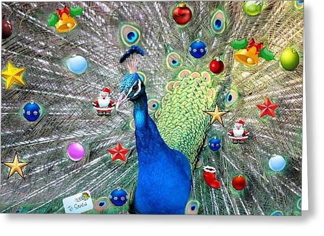 Christmas Peacock Greeting Card by Ronel Broderick