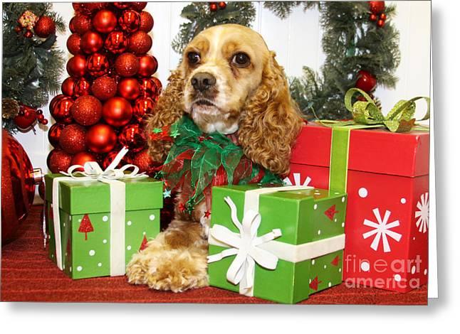 Christmas Portraits - Cocker Spaniel Greeting Card