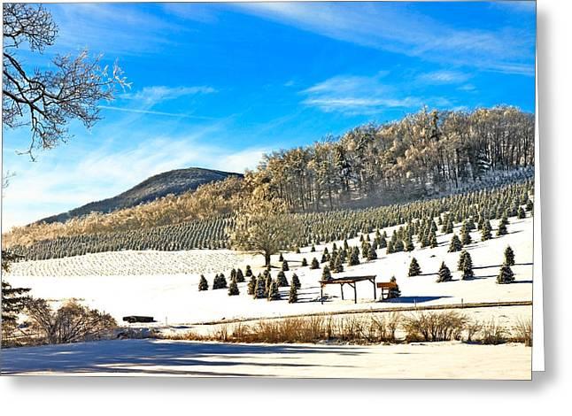Christmas Tree Farm Greeting Card