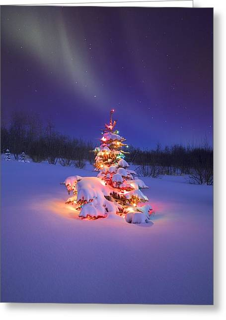Christmas Tree Glowing Under The Greeting Card by Carson Ganci