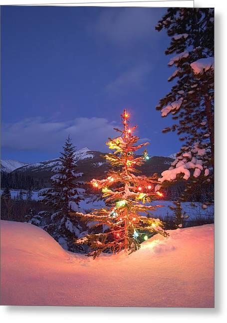 Christmas Tree Outdoors At Night Greeting Card by Carson Ganci