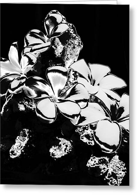 Chrome Plumeria Greeting Card by Elizabeth  Doran