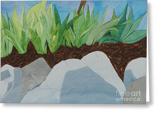 Chromitic Iris Greeting Card by Jennifer Taylor Rogerson