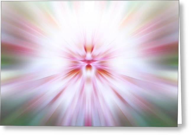 Greeting Card featuring the photograph Chrysanthemum Burst by Anthony Rego