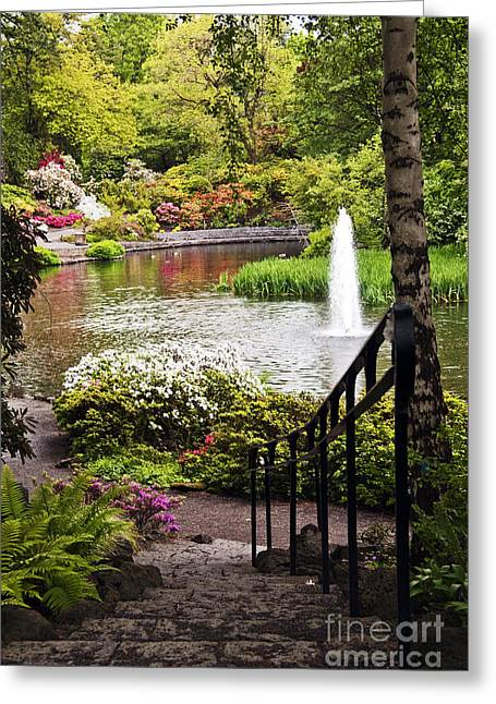 Chrystal Spring Rhododendron Garden  Greeting Card