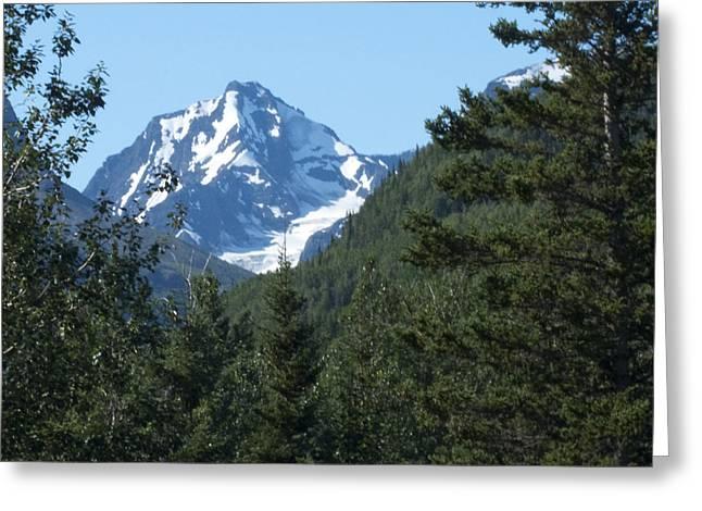 Chugach Mountain View Greeting Card by George Hawkins