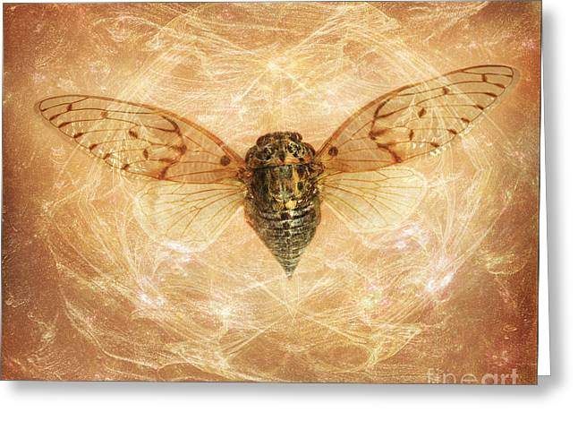 Cicada In Amber Greeting Card by Janeen Wassink Searles