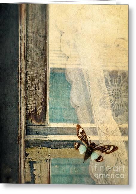 Cicada On Window Greeting Card by Jill Battaglia