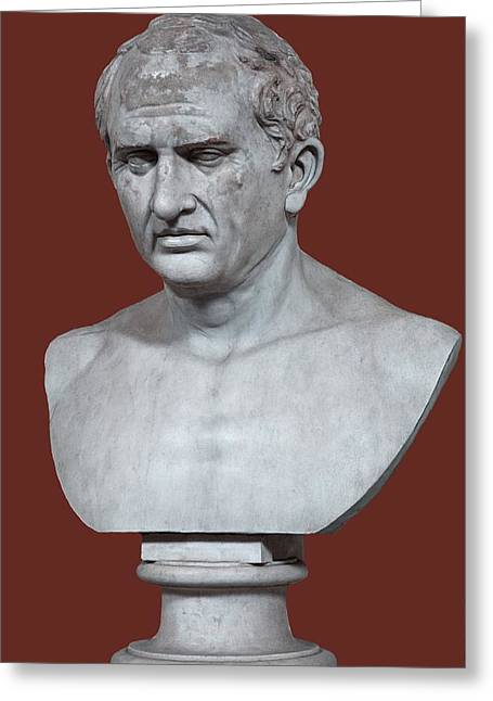 Cicero Greeting Card by Sheila Terry