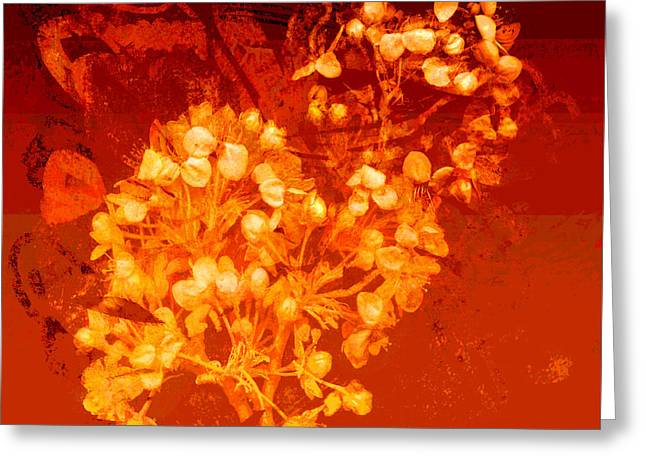 Cinnabar  Greeting Card