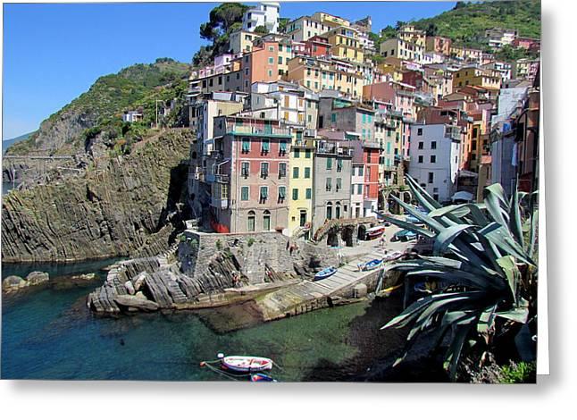 Cinque Terre Rio Maggiore Greeting Card by David Rich